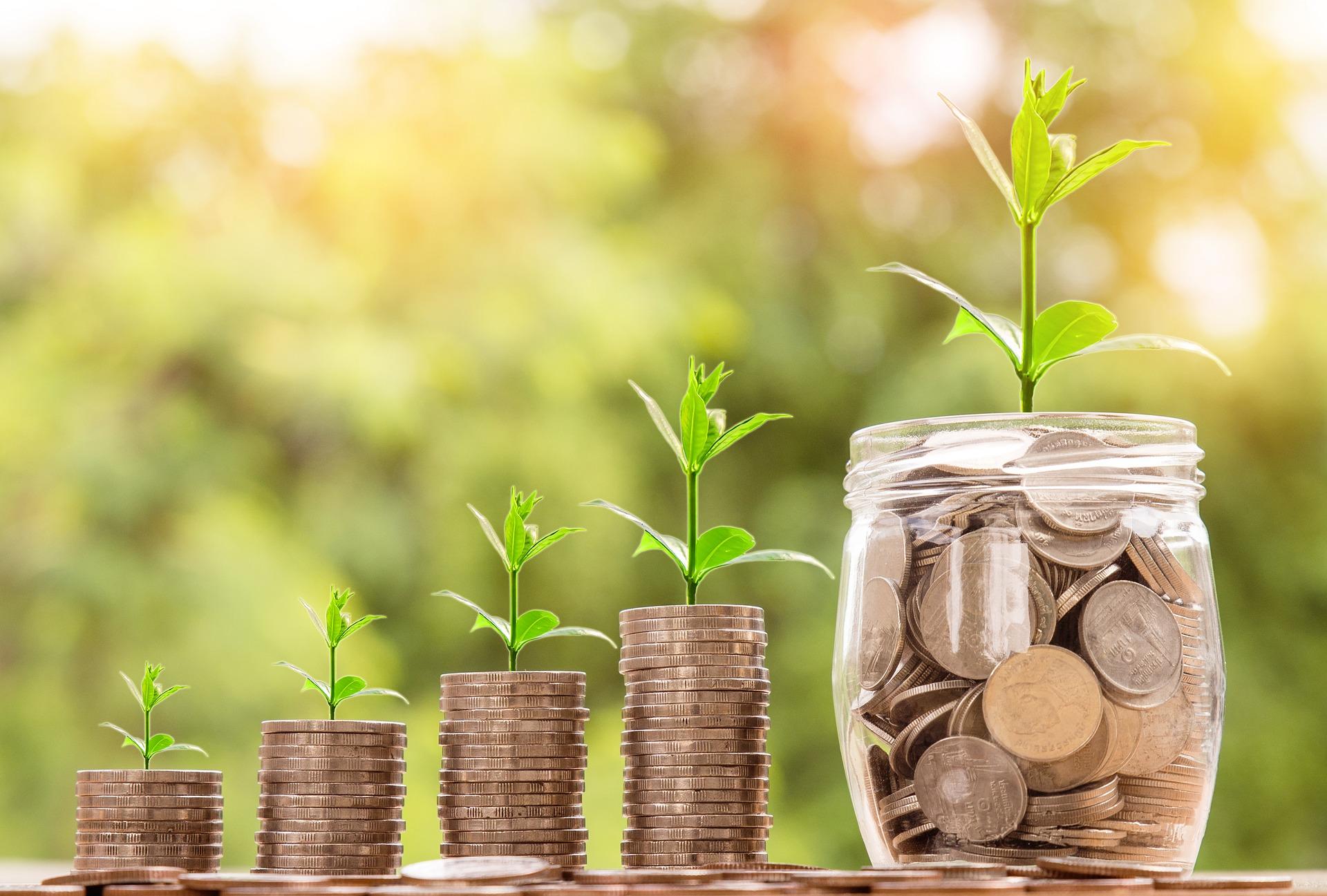 Investeeri maasse | ostan maad | metsa investeering | põllumaa investeering | turvaline investeering | kuhu investeerida |